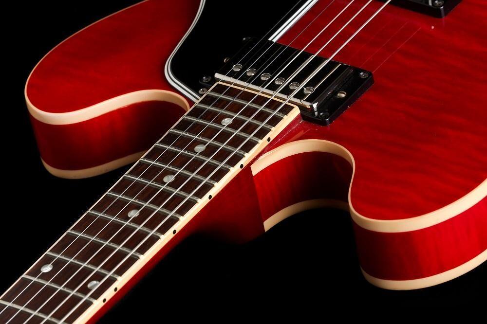 Gibson ES-335 (CG-IV)