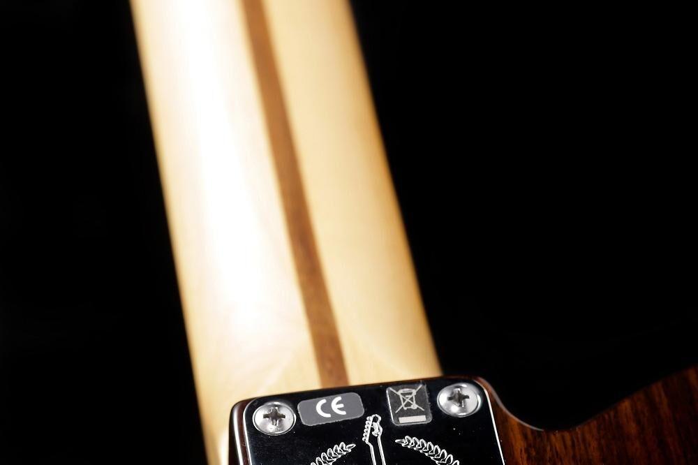 Fender Telebration Rosewood Lite Telecaster (#047)